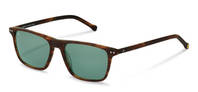 rocco by Rodenstock-Sonnenbrille-RR326-havana